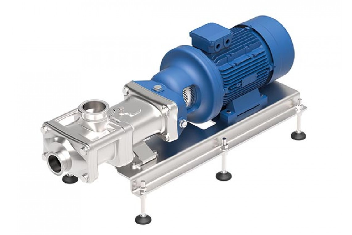 Wangen Twin Screw Pump
